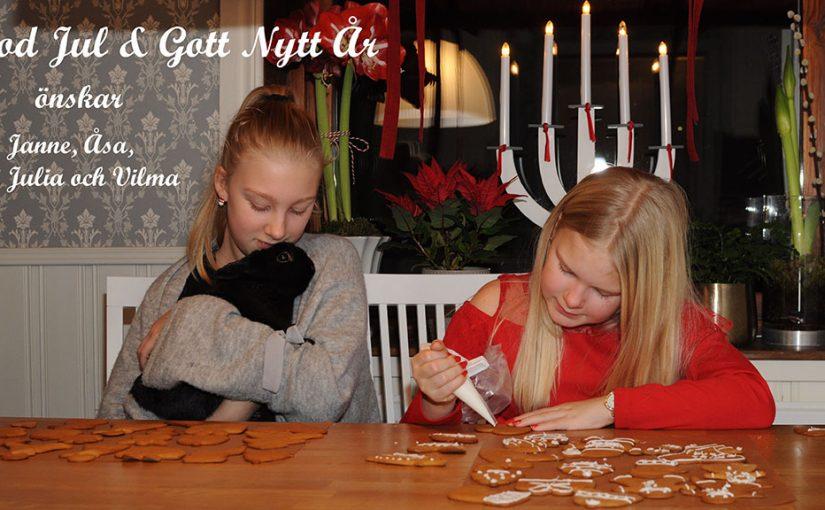 God Jul & Gott Nytt År
