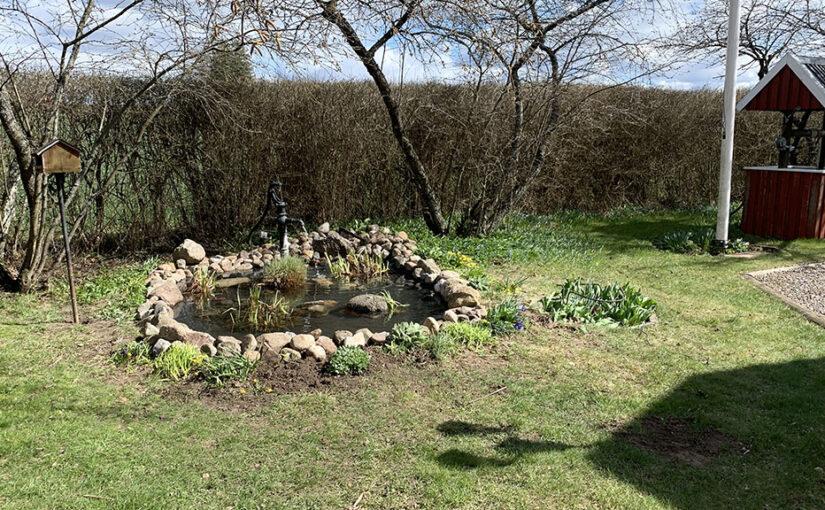 Oplanerat trädgårdsarbete