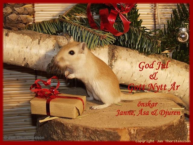 Bosse önskar God Jul