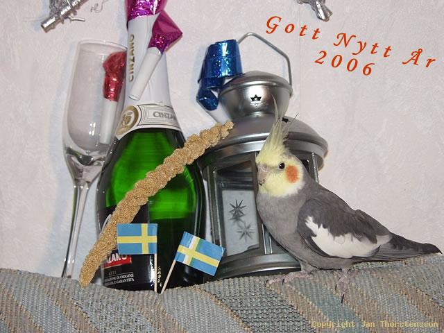Pucko önskar Gott Nytt År