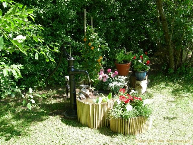 Vattenoas i trädgården