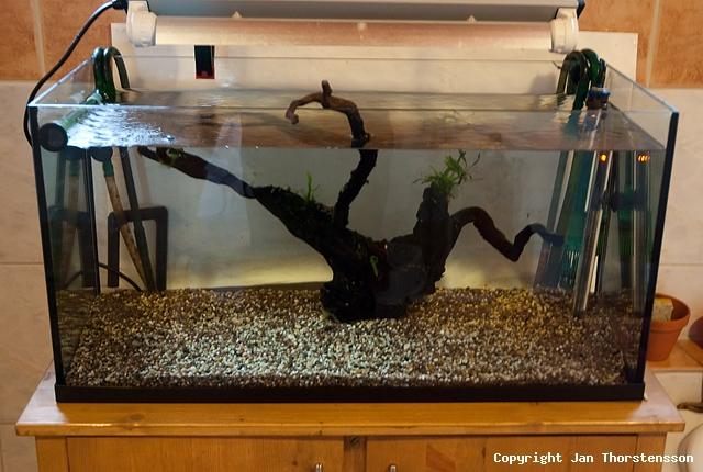 Akvariekonvertering – del 1