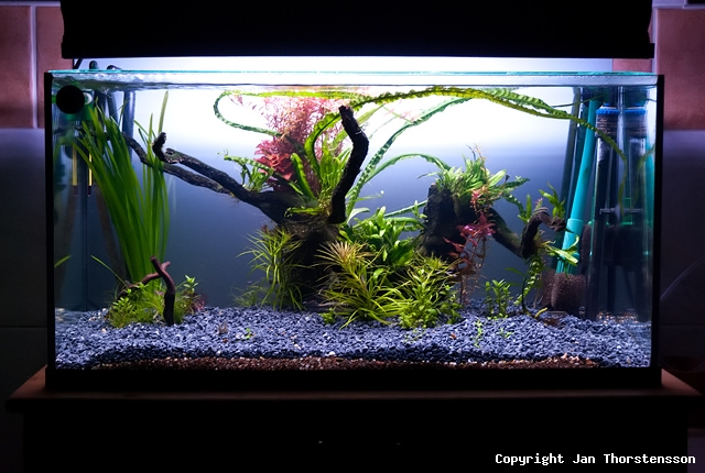 Akvariekonvertering – del 2