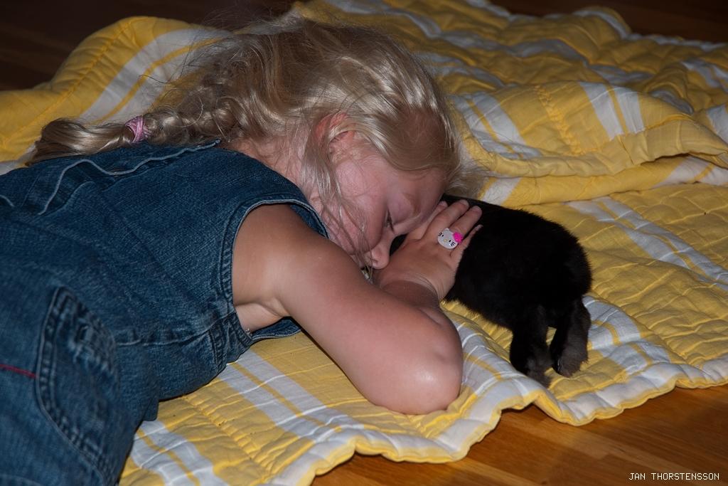 Barn och djur